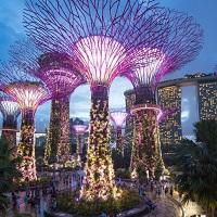 Klook ดีล : การ์เด้นส์ บาย เดอะ เบย์ ที่สิงคโปร์ (Gardens by the Bay)