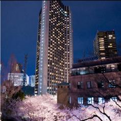 ดีลโรงแรม ญี่ปุ่น : เอเอ็นเอ อินเตอร์คอนติเนนตัล โตเกียว  ญี่ปุ่น